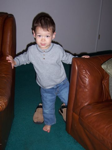 Tad trying to steal Mommy's slippers