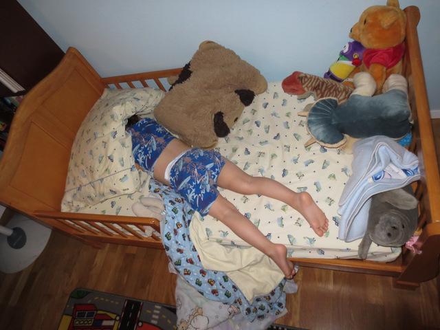 Little Girls Bed Net