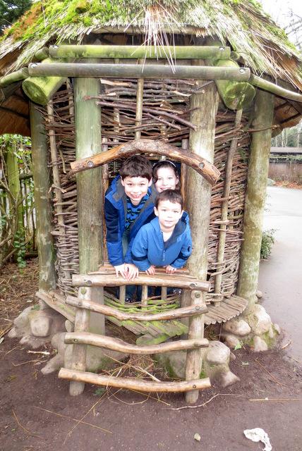 Monkeys in a hut