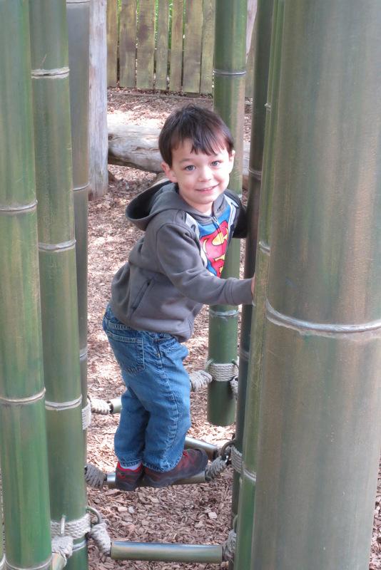 Rerun plays on the bamboo ladder bridge