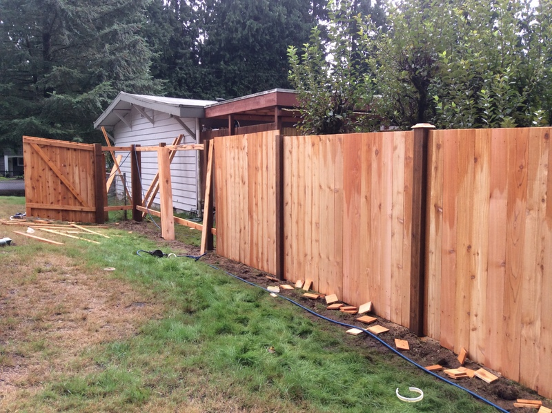 New fence!