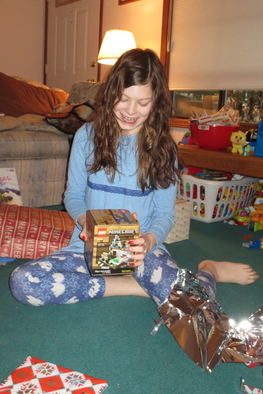 Ane gets Minecraft Legos