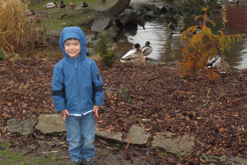 Rerun and the ducks