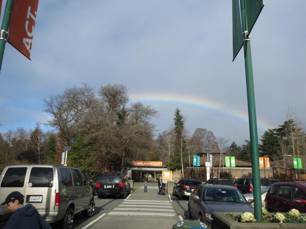 Rainbow over the zoo