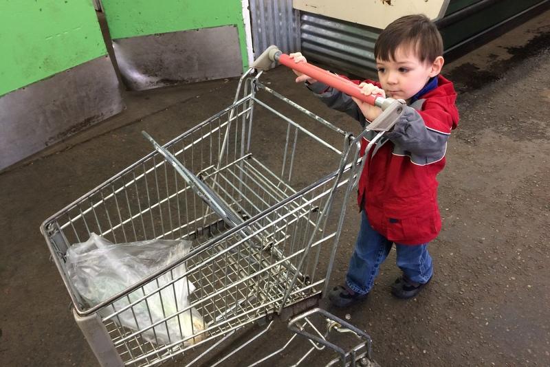 Thumper pushing the cart