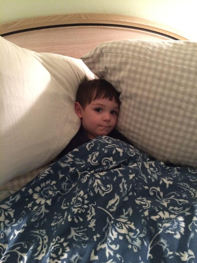 Thumper tucks himself in
