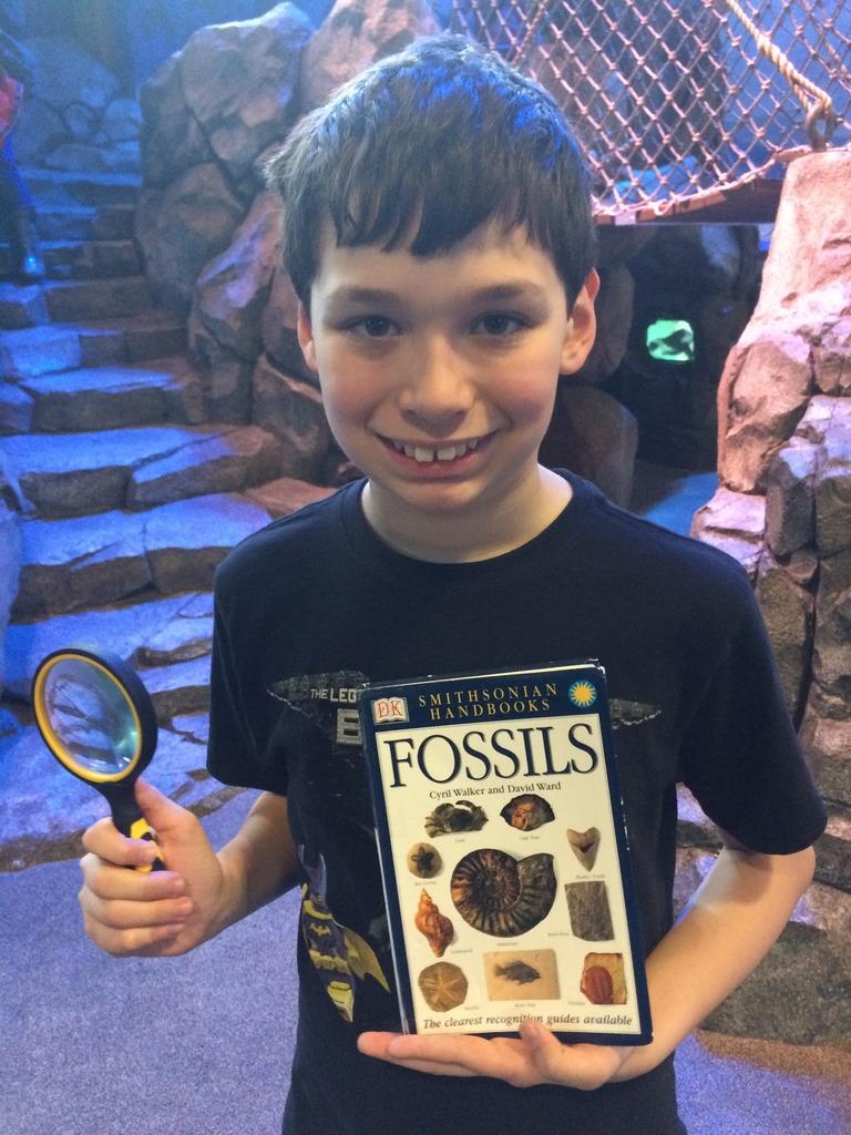 Fossil hunter